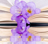 Open the book and freesia — Stock Photo