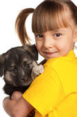 Girl with puppy — Stock Photo