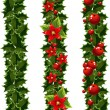 Green Christmas garlands of holly — Stock Vector #8083412