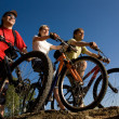 Friends bicyclists — Stok Fotoğraf #9902541