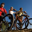 Friends bicyclists — Stock Photo #9902541