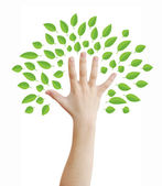 Hand as a tree — Stock Photo