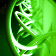 Green neon light — Stock Photo #7991949