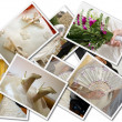 Stock Photo: Wedding photos collage