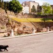 Roman Theater in Trieste - Foto Stock