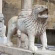 Lions supporting the columns, Basilica of Santa Maria Maggiore, - Zdjcie stockowe