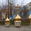 Stock Photo: Gold cupolas and orthodox cross