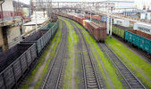 Kömür tozu ile mal vagonlar — Stok fotoğraf
