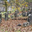 Royalty-Free Stock Photo: Old Jewish Cemetery