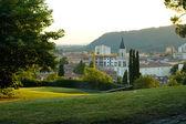 Park of Gorizia castle — Stock Photo