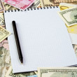 Opened spiral notepad sheet in a cage on money background — Stock Photo #8684748