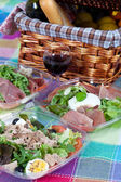 Pic-nic basket and salads — Stock Photo