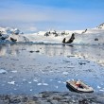 barco en la Antártida — Foto de Stock