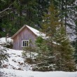 House in winter forest — Stock Photo #8831617