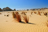 Sahara Desert, Egypt — Stock Photo