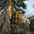 Temple in the jungle - Stock Photo