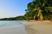 Tropical coastline on Seychelles island — Stock Photo