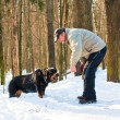 Dog of breed a Rottweiler on walk with the owner in the winter — Stock Photo #9088481