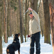 Dog of breed a Rottweiler on walk with the owner in the winter — Stock Photo #9088482