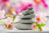 Spa stones with flower — Stock Photo
