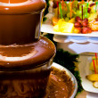 Fruit, berries prepared for ìàêàíèÿ in a chocolate fountain - Stock Photo