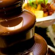 Fruit, berries prepared for ìàêàíèÿ in a chocolate fountain — Stock Photo #9093489