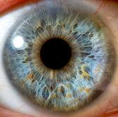 Göz makro — Stok fotoğraf