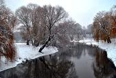 W zimowym krajobrazie. — Zdjęcie stockowe