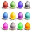 Color easter eggs in the nest, set of colour — Stock Vector #8761194