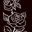 Three White Roses  Isolated On Black  Background, Vector Illustration — Векторная иллюстрация