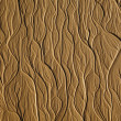 Tree-type texture on the sand beach — Stock Photo #9455575