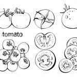Постер, плакат: Tomatoes set