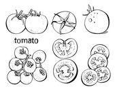 Conjunto de tomates — Vector de stock