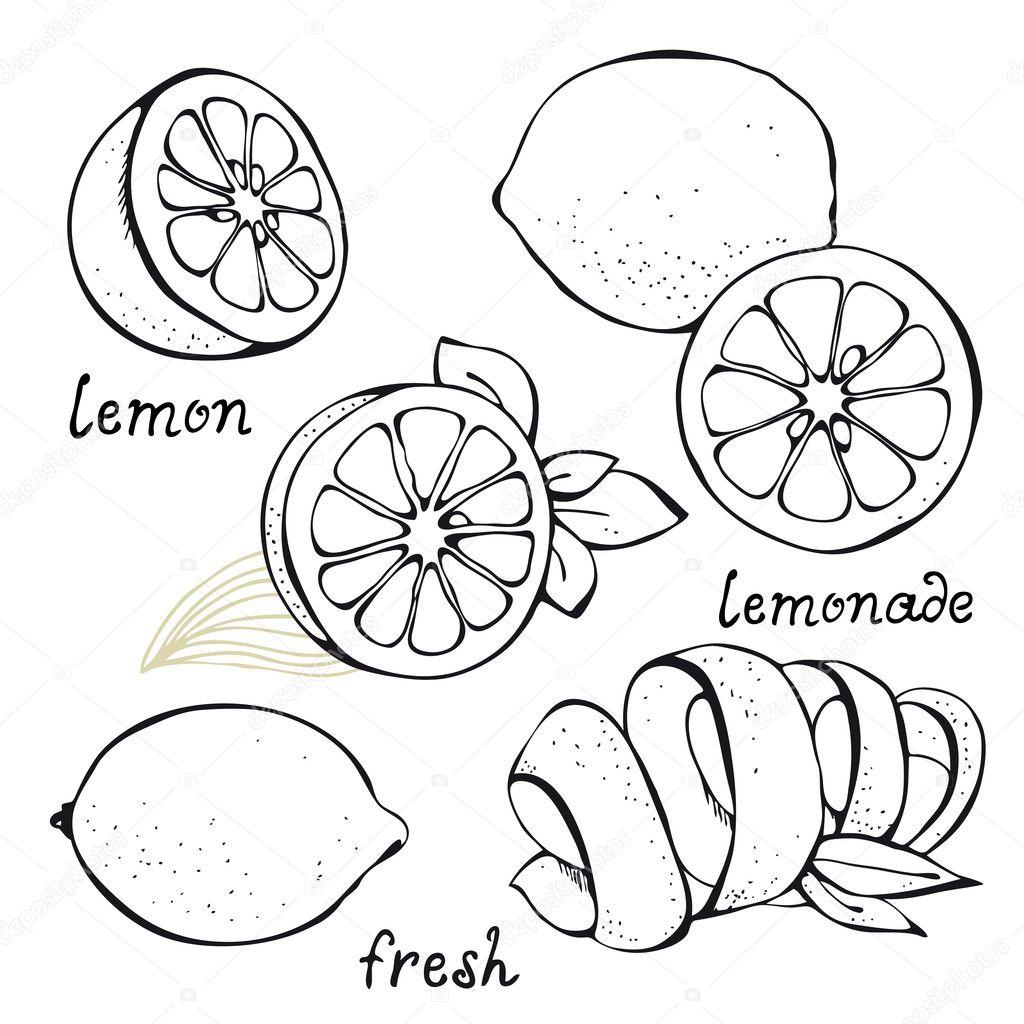 柠檬简笔画步骤