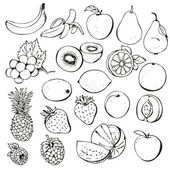 Fruit and berry collection — Stock Vector
