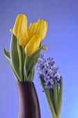 蓝色背景上的春天的花朵 — 图库照片