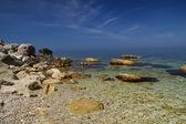 野生のビーチ — ストック写真