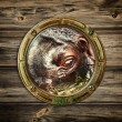 Porthole with hippopotamus - Stockfoto