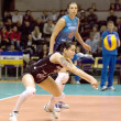 Svetlana Kryuchkova. Libero of Dynamo Moscow — Stock Photo
