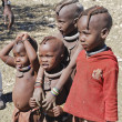 Little himba kids — Foto Stock