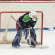 Goaltender of team Avangard Podolsk — Stock Photo #9195822