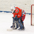 Stock Photo: Goaltender of hockey team Scherbinka