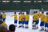 Dynamo-Moscow — Stock Photo