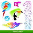 Vector set of stylized decorative tropical birds — Vector de stock