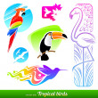 Vector set of stylized decorative tropical birds — Stock vektor