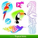Векторный набор стилизованные Декоративные тропические птицы — Cтоковый вектор
