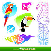 Vector set of stylized decorative tropical birds — Stock Vector
