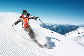 On the Ski — Stock Photo