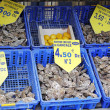 Oyster market in Cancale, France — Stock Photo