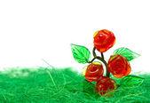 Rose bush in the white — Stock Photo